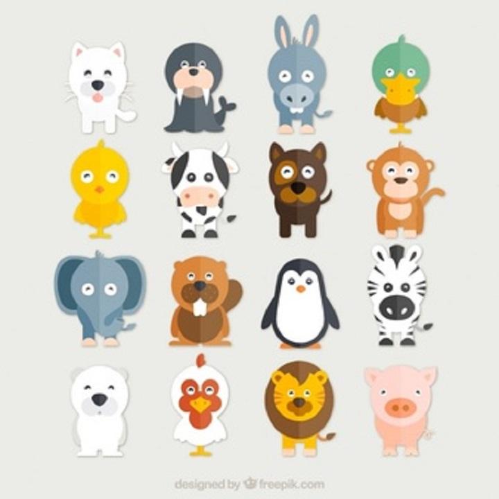 İngilizce Hayvan İsimleri, Telaffuzları ve Okunuşları