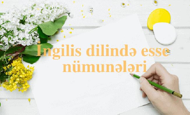 Ingilis dilində esse nümunələri