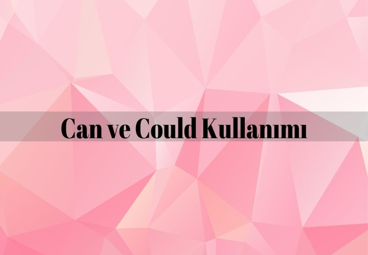 Can ve Could Kullanımı